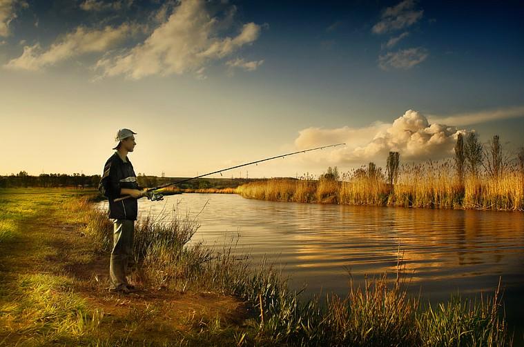 чего добились рыбаки